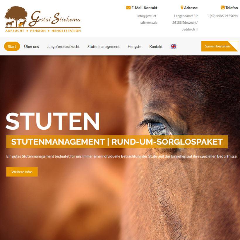 Webdesign Bremen Stiekema